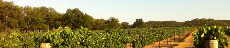 Texas Wine Geek &#8211; Drive. Taste. Talk. Write.